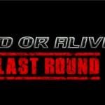 doa5_last_round